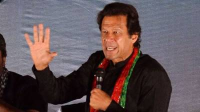 'Donkey an ordinary term', PTI counsel tells ECP over foul language notice