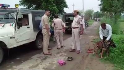 Muslim man beaten to death over suspicion of cow smuggling in India