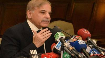 Shahbaz Sharif defeated by PTI candidate in DG Khan