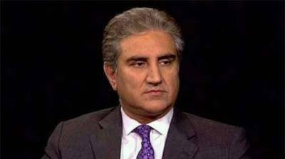 Defeated elements in general polls, want to harm democracy: Qureshi
