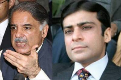 Hamza Shahbaz appointed opposition leader in Punjab Assembly, Shahbaz Sharif in NA
