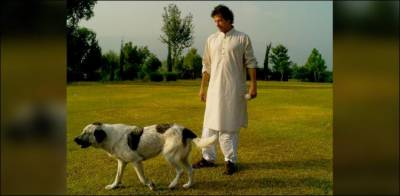 Imran Khan's pet dogs earned a seperate Wikipedia page