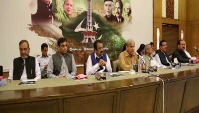 PML-N to play role of strong opposition in Punjab: Ahmed
