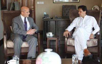 US Ambassador holds meeting with PM designate Imran Khan