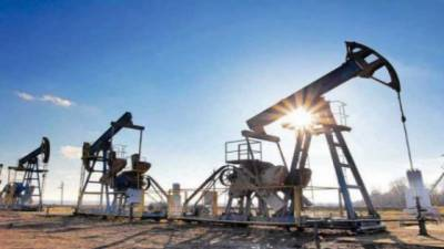 PPL discovers new oil and gas reserves in Pakistan