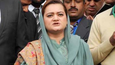 Maryam Aurangzeb offers help to Information Minister Fawad Chaudhry