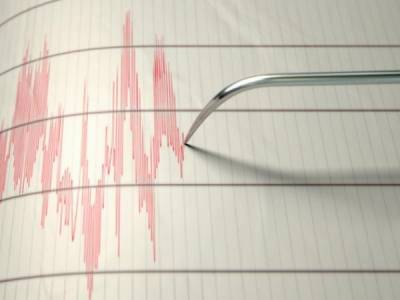 Two dead, 241 injured in 6.0 quake in western Iran: officials