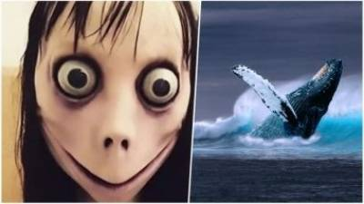 Pakistan bans suicidal games Blue Whale, Momo Challenge across the country