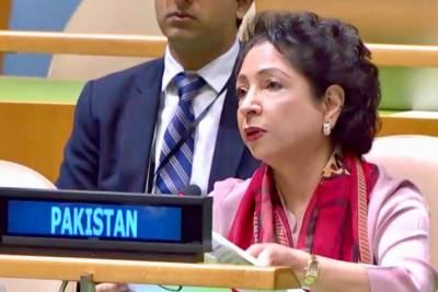 At UN, Pakistan calls for resolving Kashmir, Palestine disputes for world peace