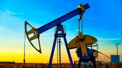 New oil and gas reserves discovered in Punjab: PPL