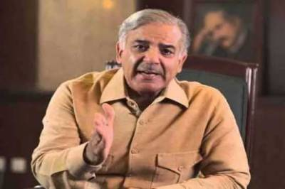 Opposition parties, govt allies parties protesting against election rigging: Shahbaz
