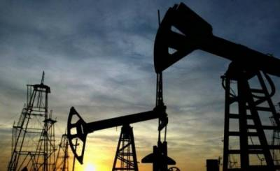 New oil reserves discovered in Pakistan, first ever discovery in the area