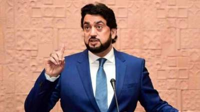 LEAs playing vital role in maintaining law & order: Shehryar