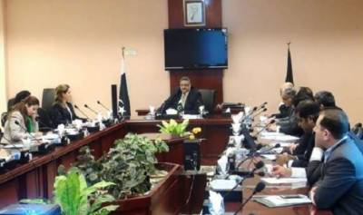 IMF delegation appreciates BISP's performance