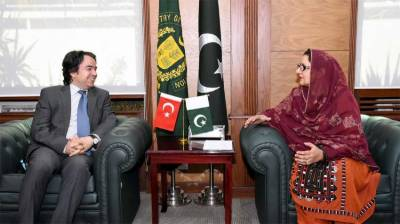 Pakistan and Turkey decide do augment defence industry capabilities