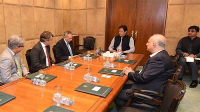 Govt determined to facilitate foreign investors: PM