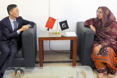 Pakistan, China to enhance cooperation in defence production: Zobaida