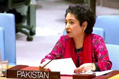 Pakistan tells UN it faces terrorist threat from outside after clearing their sanctuaries on its soil
