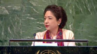 Pakistan urges int'l community to take concrete steps to alleviate sufferings of Kashmiris