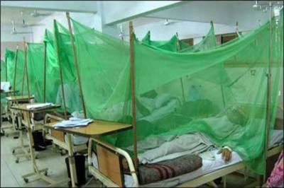 22 more dengue cases detected in Rawalpindi