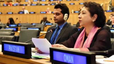 Pakistan's socio-economic priorities in line with UN's SDGs: Maleeha