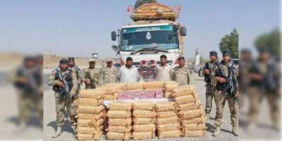 Significant seizures of 1381 tons of narcotics, 409 ton precursors made