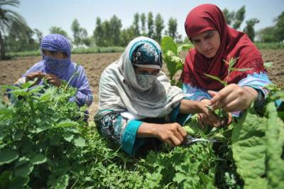Int'l Day of Rural Women being observed today