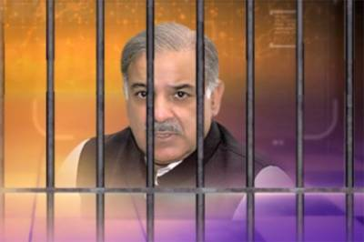 Shahbaz Sharif reportedly grilled in NAB custody: Sources
