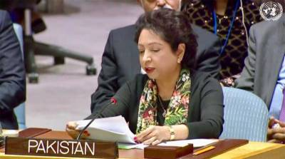Int'l community should continue to lend voice for Palestinian issue: Maleeha