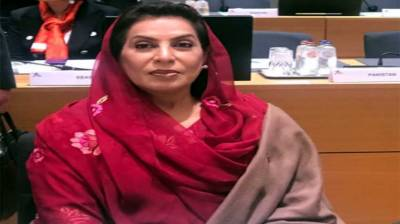 Pakistan urges global cooperation to confront challenges