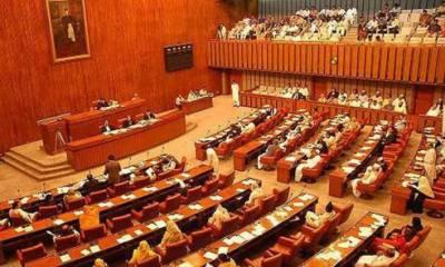 Senate body to be briefed SBP on devolution of rupee