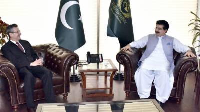 'Pak, Brazil to further cement cooperation in diverse sectors'