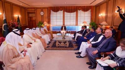 UAE evinces its corporate sector's interest to invest in Pakistan