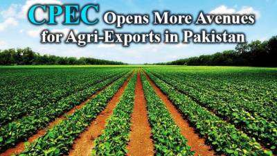 CPEC: A big opportunity emerges for Pakistan agriculture sector