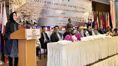 APA members laud Pakistan's efforts towards regional peace