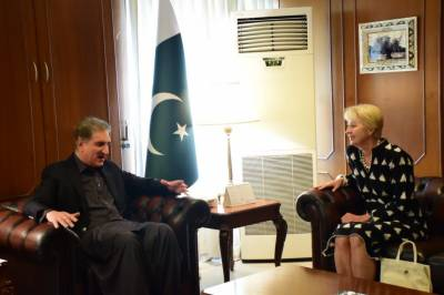 FM Qureshi lauds Austrian envoy's efforts to promote bilateral ties