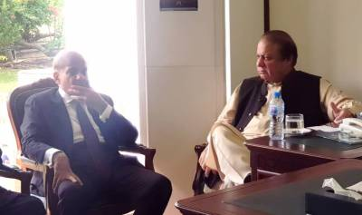 Opposition All Parties Conference: PML N takes important decision