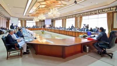 Federal Cabinet reviews progress on 100-day plan and decides to make it public