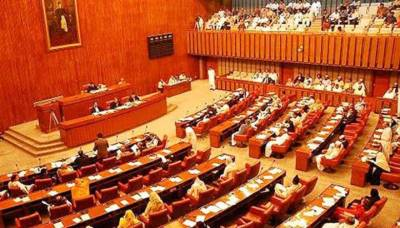 Senate discusses electricity, gas prices and foreign policy