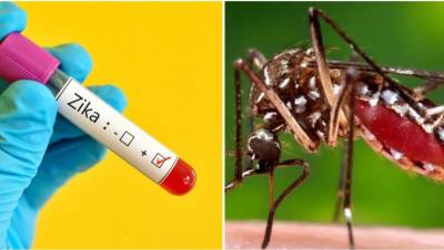 31 cases of Zika virus reported in central India