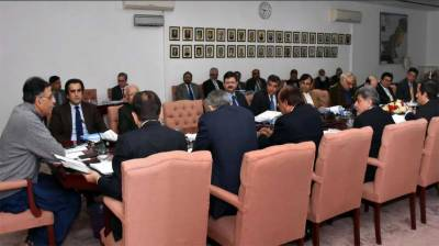 National Economic Council executive committee meeting takes important decisions