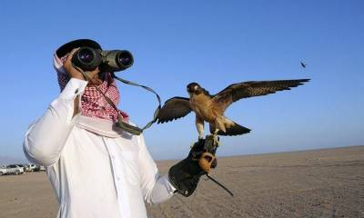 Qatari Prince arrives in Thal desert for hunting protected migratory bird