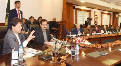 Punjab provincial ministers call on PM