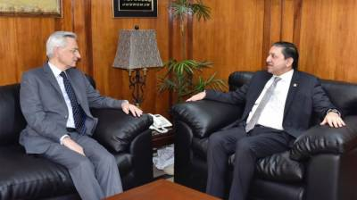 French businessmen willing to invest in Pakistan: Envoy