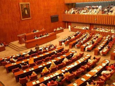 Anti torture, legal aid bills on cards to protect weak segments of society: PTI government