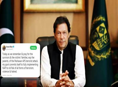 PM Imran Khan expresses resolve to fully implement NAP