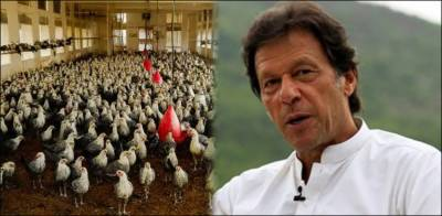 US media lauds PM Imran Khan