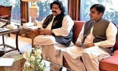 Federal cabinet takes final decision over placing names of MNA Mohsin Dawar, Ali Wazir on ECL