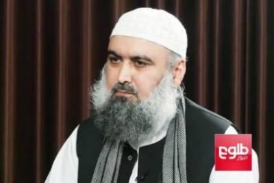 Pakistan and Saudi Arabia role crucial in Afghanistan endgame: Taliban commander