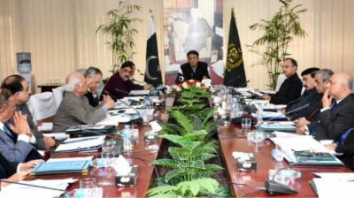 ECC discusses revenue impact of custom duty, sales tax withdrawal on cotton import